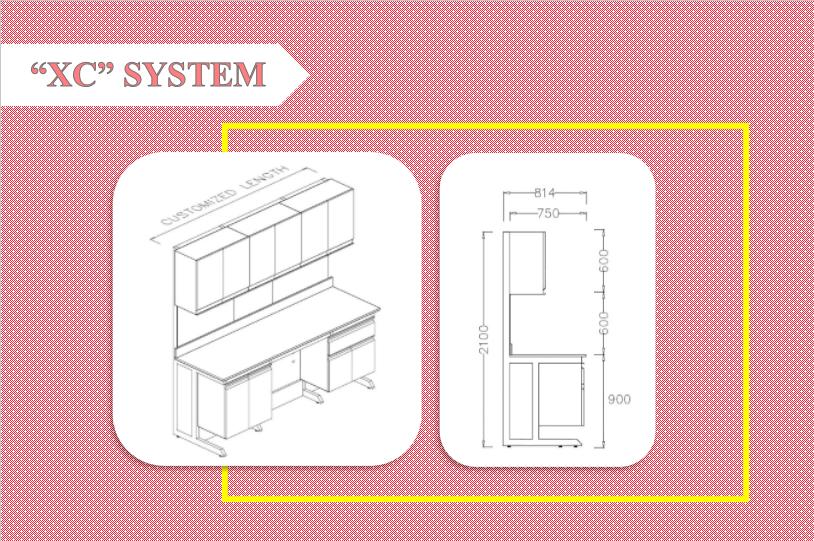 XC system